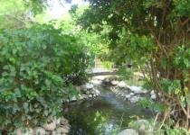Мини-зоопарк в Чолаклы