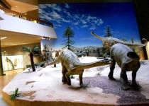 Государственный музей естественной истории