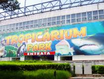 Парк «Тропикариум»