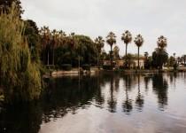 Приморский парк Гагры