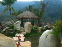 Тропический лес Янода