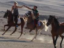 Конный клуб Sunny Horse Stable