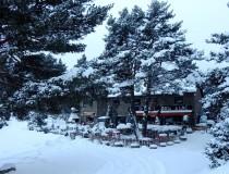 Ресторан «La Dama del Llac»