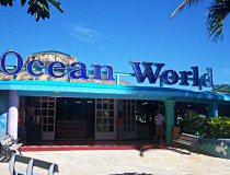 Океанариум Ocean World