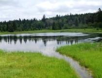 Природный центр Керри Вуд