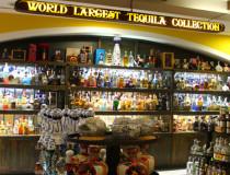 Музей текилы в Канкуне