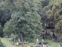 Берлинское кладбище общины церкви Святой Софии