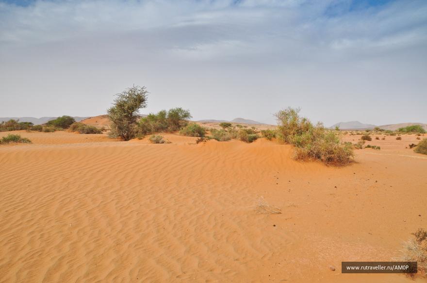 7 пустыня