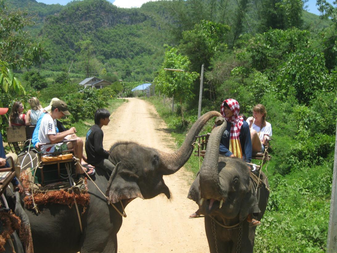 Слоновья деревня