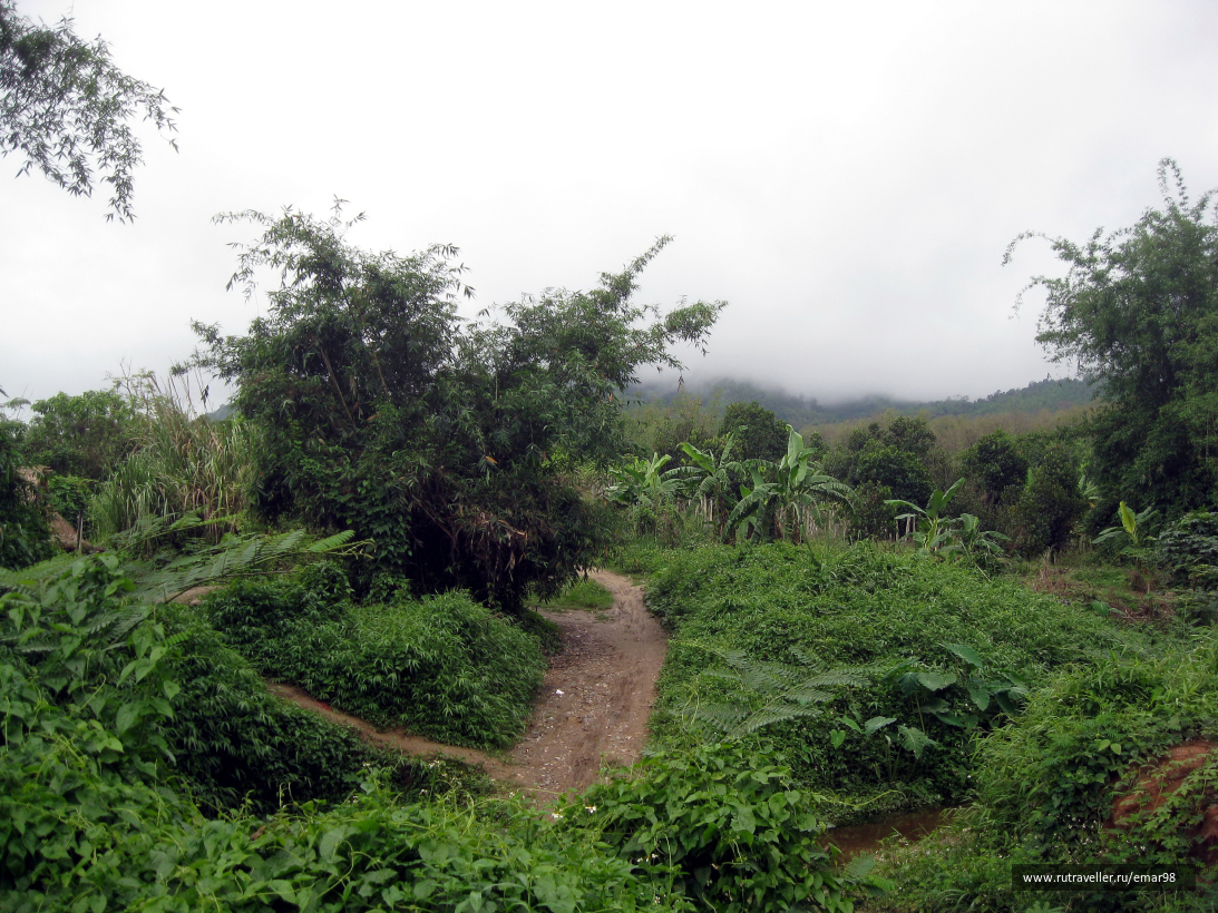 Природа севера Таиланда