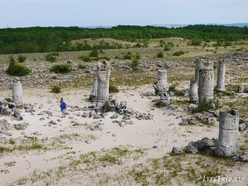 Каменный лес недалеко от Варны.