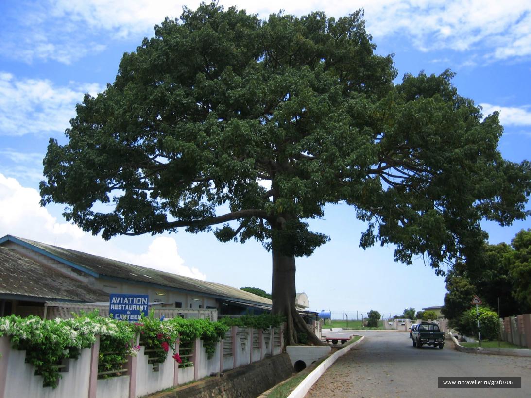 Аккра(Гана) октябрь 2007 (14)