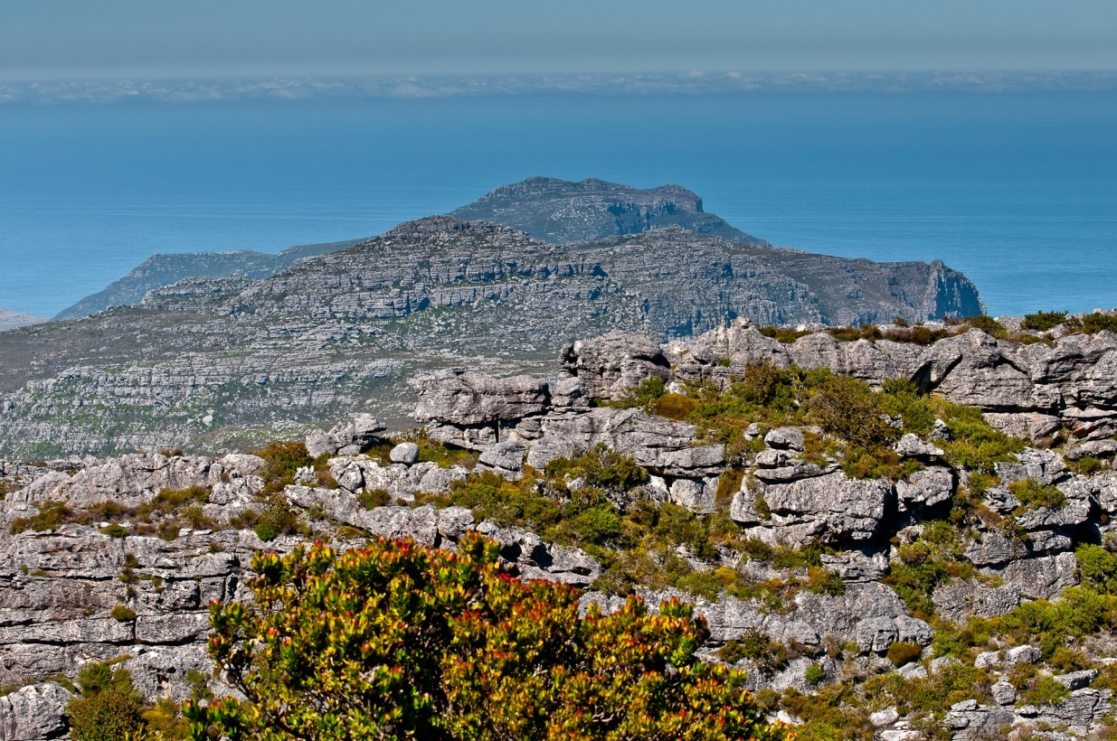 Table_Mountain_0072