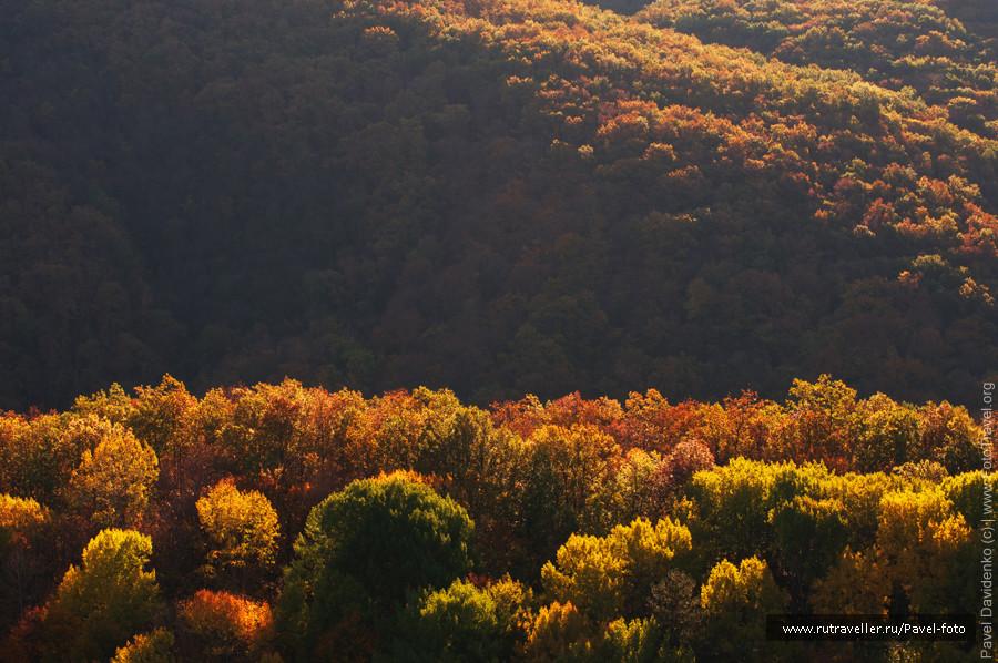 Autumn_view_DSC_0246
