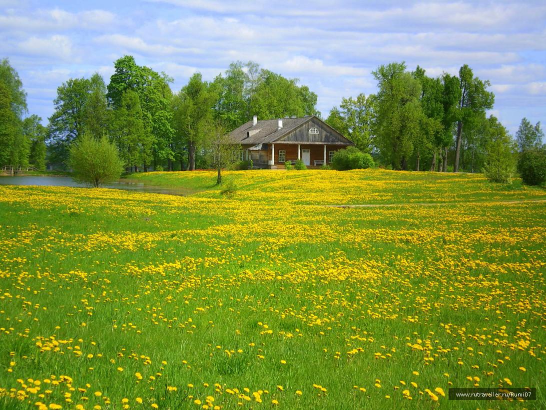 Псков-2008 Тригорское