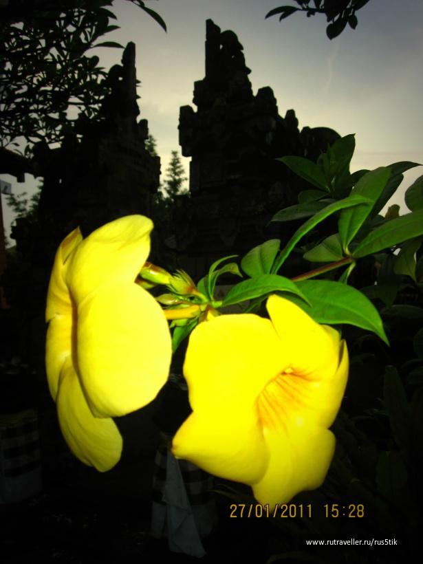 Бали2011 323