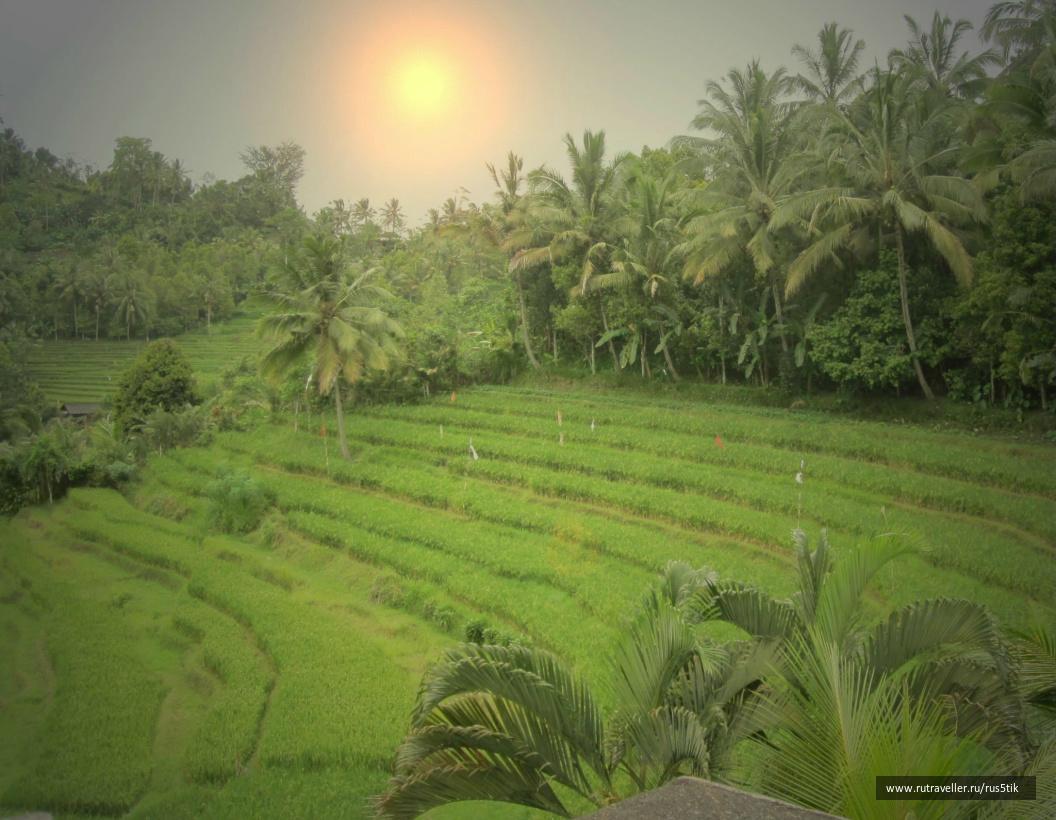 Бали2011 201 - копия