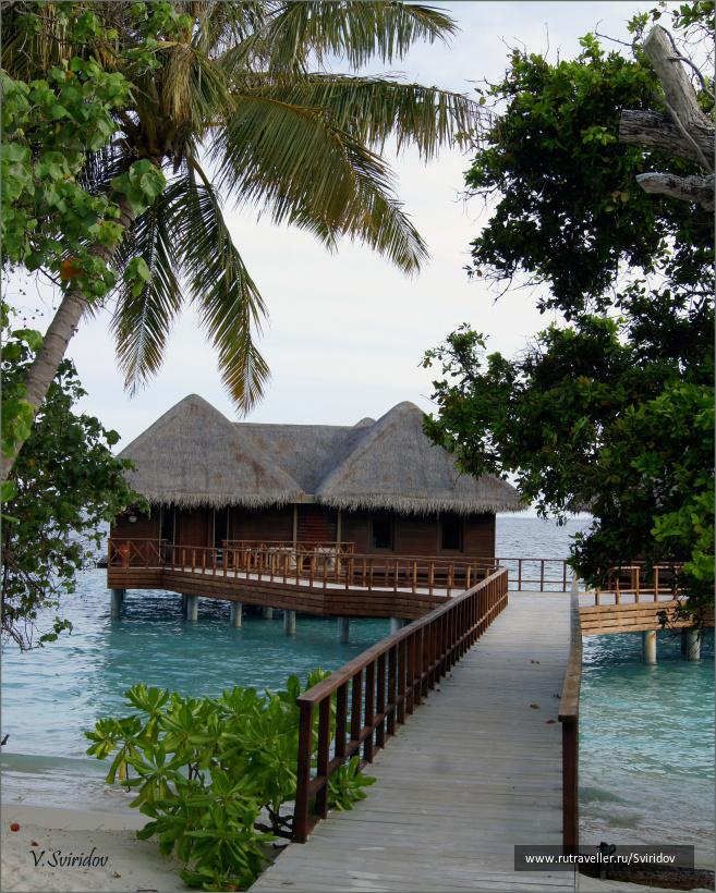 Мальдивы. Остров Бандос. Water villas.