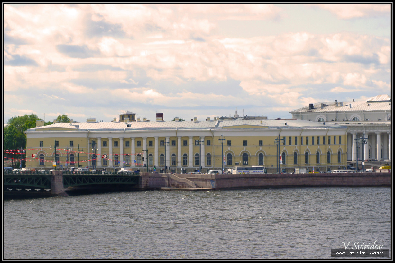 Зоологический музей Зоологического института РАН.