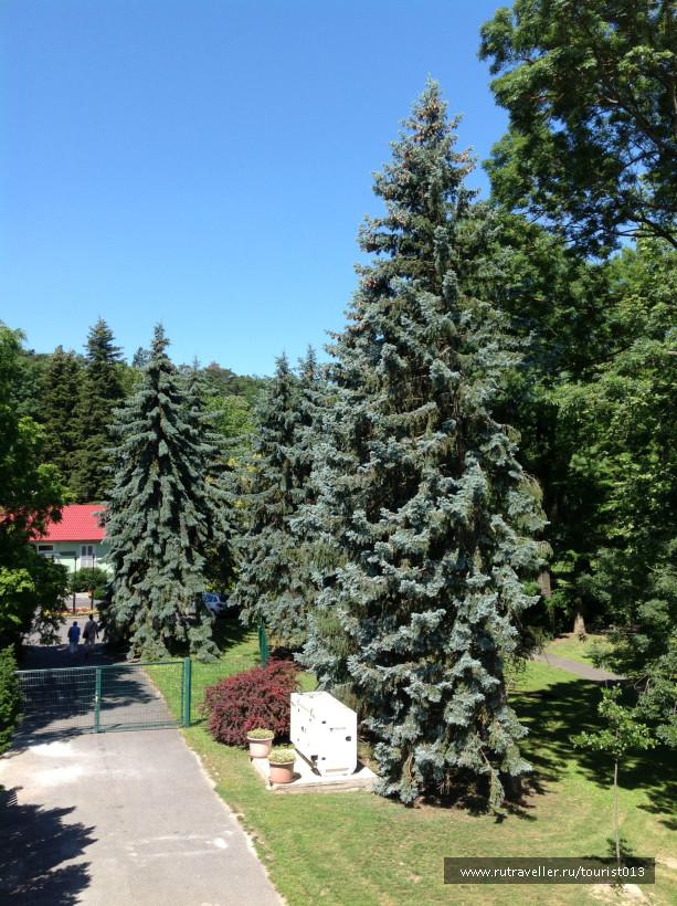 парк у озера 2