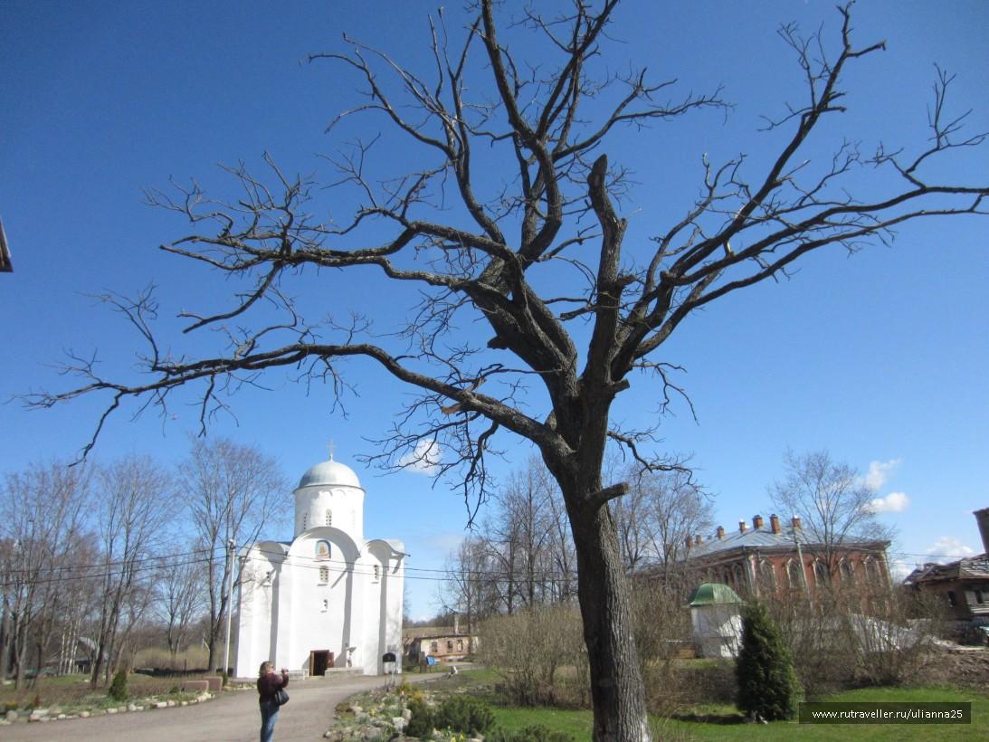 Староладожский Свято-Успенский девичий монастырь.