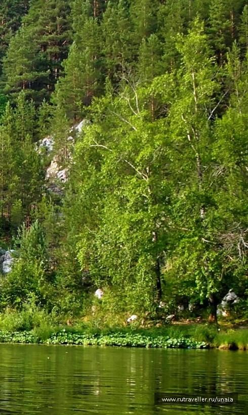 фото Шадейка.Лето 2006. 006